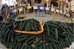 Pas de dédommagement pour les producteurs de légumes, dit berlin