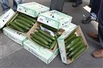 Europe : l'ue relève son aide aux producteurs affectés par l'e. coli