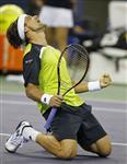 Tennis : david ferrer en finale du masters 1000 de shanghai