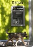 Feu vert provisoire de bruxelles à l'aide de madrid à bankia