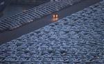 Europe : l'ue se penche sur les demandes de paris sur les autos coréennes