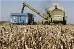 Marché : Les prix à la production en hausse de 0,5% en octobre
