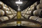 Marché : Les exportations de Cognac résistent à la crise