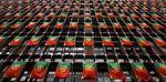 Marché : Satisfecit du FMI et adjudication du Portugal prévue mercredi