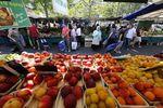 Marché : L'UE promet une aide aux agriculteurs face à l'embargo russe