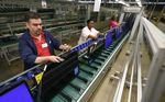 Marché : Les prix producteurs en hausse de 0,2% en octobre aux Etats-Unis