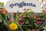 Marché : Syngenta veut céder ses semences et racheter des actions